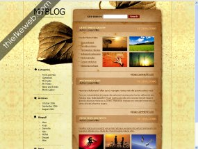 thiet_ke_web_dep_12614.jpg