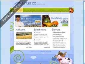 thiet_ke_website_dep_15769.jpg
